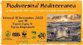 Incontro a Porto Empedocle sulla tutela della biodiversità del Mediterraneo - Grandangolo Agrigento