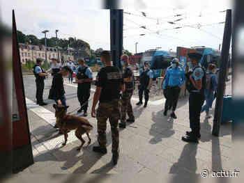 Châteaubriant : drogue, détention d'armes, les gendarmes contrôlent 50 personnes et sévissent - actu.fr