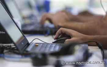 Busca por serviços públicos digitais tem salto durante a pandemia - NSC Total