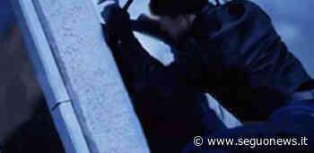 Caltanissetta, scuola presa di mira dai ladri: Caltaqua stanzia contributo economico - SeguoNews