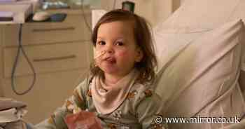 Mum's agony as girl, 2, 'hits rock bottom' in fight against aggressive cancer
