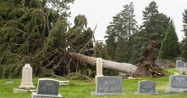 City surveys damage winds heaped on top of cemetery's already crumbling infrastructure