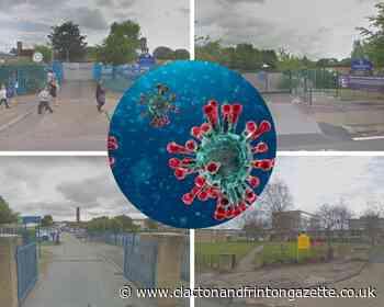 Schools in Essex with confirmed coronavirus cases   Clacton and Frinton Gazette - Clacton and Frinton Gazette