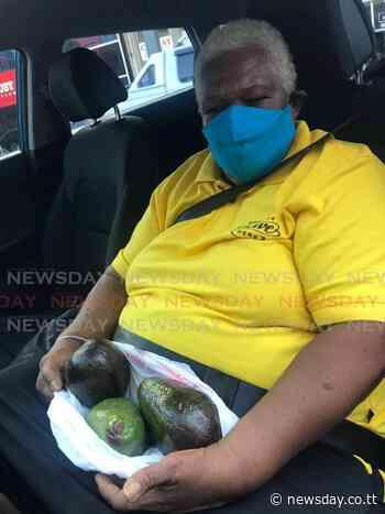 Police question woman, 65, on poisoned La Romaine zaboca tree - TT Newsday