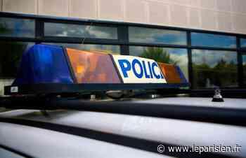 Des policiers visés par des feux d'artifice à Fontenay-aux-Roses - Le Parisien