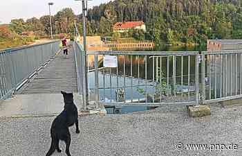 Neue Gitterroste für die Alzwehr-Stege - Trostberg - Passauer Neue Presse