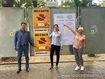 """M5S, eurodeputata Pignedoli a Bolzano: """"Perché votare sì al referendum per il taglio dei parlamentari"""" - La Voce di Bolzano"""