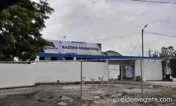 A 3 meses sin operar el rastro en Misantla, Procuraduría de Medio Ambiente no da resolutivo - El Demócrata