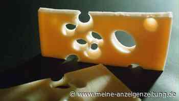 Käse im Kühlschrank richtig lagern: Für Haltbarkeit und Geschmack