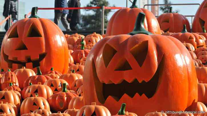 Dormont Officials Say Halloween Can Go On This Year, Advises Residents To Follow CDC Guidelines