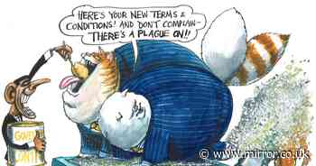 Kevin Maguire - 'Tories conspiring to keep the fatcats fed once again'