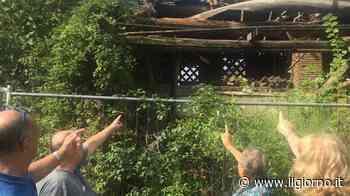 Crolli, degrado e proteste a Varedo: la villa gioiello dimenticata - IL GIORNO
