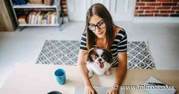 Open plan living going out of style as Brits adapt to working from home