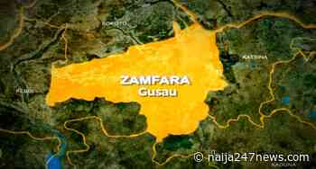 World Bank Projects: Zamfara Gov't tasks communities on maintenance - Naija247news