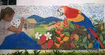San Vicente de Chucurí: el pueblo que le pinta a la paz - http://www.radionacional.co/
