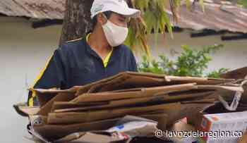Destacan trabajo ambiental que realizan jóvenes en Paicol - Noticias