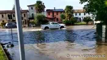 Forte burrasca a Bovolone: alberi caduti, cantine e strade allagate - VeronaSera