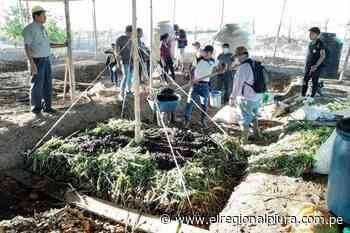 Sullana: instalarán biohuertos familiares para producción de hortalizas en distrito de Querecotillo - elregionalpiura.com.pe