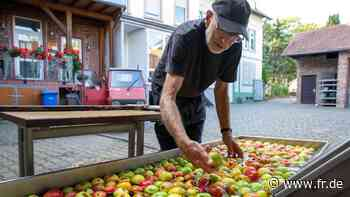 Keltern im Taunus: Des Apfels reine Seele - fr.de