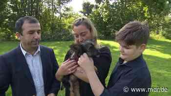 Welpenhandel: Familie abgezockt - Tierschützer warnen vor Hundekauf im Internet - MDR