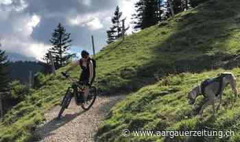 Junge Fahrerin kämpft für Mountainbike-Trail: Sie möchte lieber «ordentlich» als querfeldein biken - Aargauer Zeitung