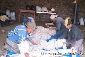 Carabaya: Artesanos de Macusani a punto de declararse en quiebra - Pachamama radio 850 AM