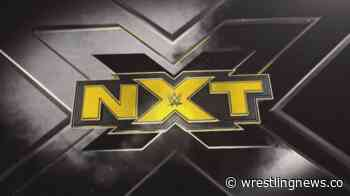 Final competitor announced for WWE NXT Gauntlet Eliminator Match - Wrestling News