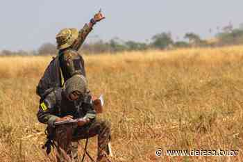 Militares das três Forças realizam adestramento de Salto Livre Operacional - DefesaTV