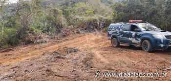 Polícia flagra escavação de poço e desmate ilegal em Muniz Freire - Dia a Dia Espírito Santo