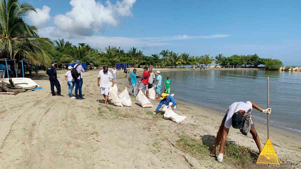 La Dirección Marítima limpia las playas de Coveñas - EL HERALDO