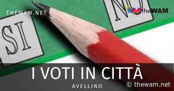 Avellino, ecco i voti del referendum in città: grande vittoria del sì - The Wam.net