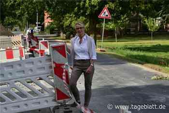 Der Schuldamm in Ahrensmoor ist fertig saniert - TAGEBLATT - Lokalnachrichten aus Harsefeld. - Tageblatt-online