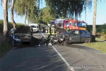 Zwei Schwerverletzte nach Unfall in Harsefeld - Blaulicht - Tageblatt-online