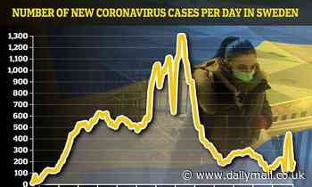 Expert claims Sweden now has 'herd immunity' from coronavirus