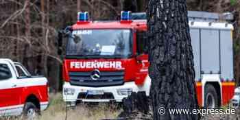 Roetgen: Polizei nimmt Brandstifterin im Waldstück fest - EXPRESS