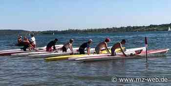 Freigewässermeisterschaften im Rettungsschwimmen: Auf den Notfall vorbereitet - Mitteldeutsche Zeitung