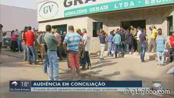 Em audiência, empresa de café apresenta propostas para pagar produtores em Muzambinho, MG - G1