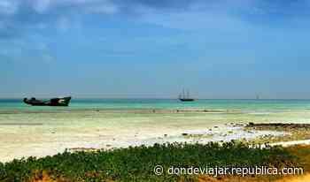 ¿Quieres teletrabajar viviendo en el paraíso de Aruba? - Republica.com