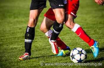 Fußball in Ditzingen: Heimerdingen nimmt nur einen Zähler mit - Leonberger Kreiszeitung