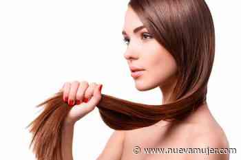 Mascarilla aceite de oliva con huevo para alisar y nutrir el cabello - Nueva Mujer