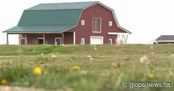 APAS Connectivity Task Force researching internet issues in rural Saskatchewan areas - Global News