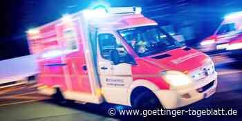 Unfall bei Bad Gandersheim: Tier ausgewichen, gegen Baum gekracht - Göttinger Tageblatt