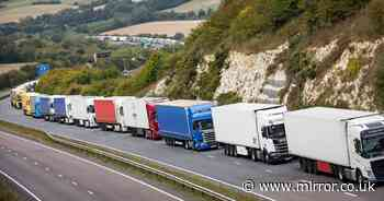 Michael Gove admits Brexit could cause 7,000-truck-long queues