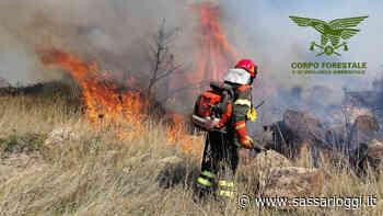 Ittiri, incendio nelle campagne: sul posto un elicottero - Sassari Oggi