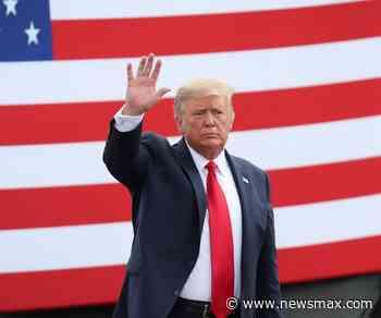 Dems Seek to Dent Trump's Florida Cuban Support - Newsmax