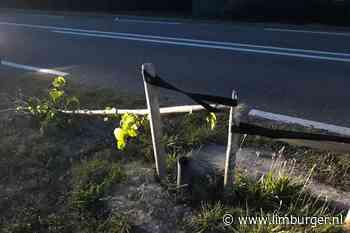 Bomenhater actief in Leveroy, jonge boompjes doelwit - De Limburger