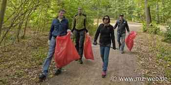 """Clean-up-Day in Quedlinburg: """"Da lag eine ganze Wohnzimmereinrichtung"""" - Mitteldeutsche Zeitung"""