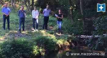 Visbeker Aue In Wildeshausen: Durch ökologische Maßnahmen bleibt der Bach im Fluss - Nordwest-Zeitung