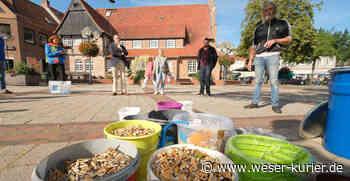 Kippenfreies Wildeshausen: 2500 Kippen in einer Stunde - WESER-KURIER