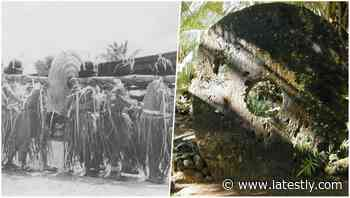 Yap Stone Money: Largest & Heaviest Currency of the World Found in this Island; Watch Video of Rai Stones - LatestLY